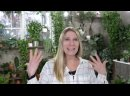The Best Fast Growing Low Light Hanging Plants webm