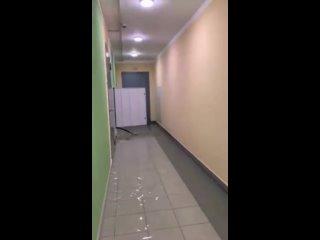 Потоп на улице Мечтателей