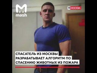 Спасатель из Москвы разрабатывает инструкцию по спасению домашних животных из огня.