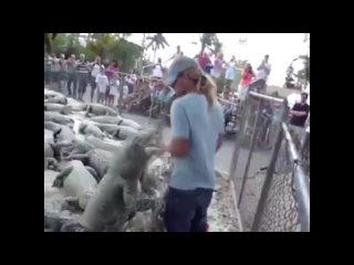ANIMALS FUCKING HATE US