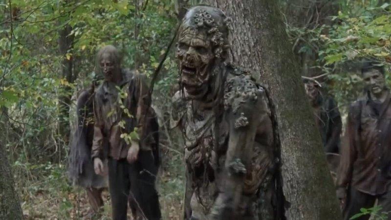 Вся правда о ходячих из сериала Ходячие мертвецы