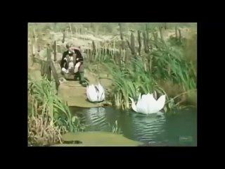 Сборник добрых песен из фильмов для детей 🍬 _ Золотая коллекция