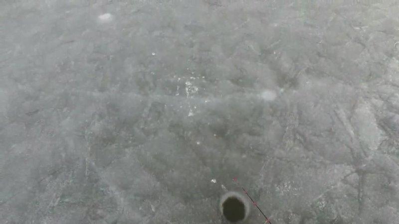 Последний лед Обратный отсчет 1