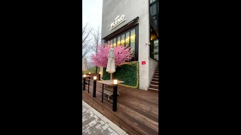 2021 03 28 Cafe Pleno ~ Kotayu♪jks @295ayukota Твиттер