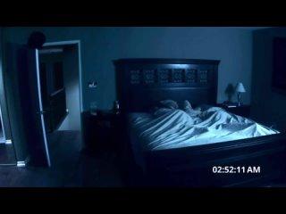 Кот в 3 часа ночи