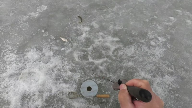 Последний лед Обратный отсчет минус 1
