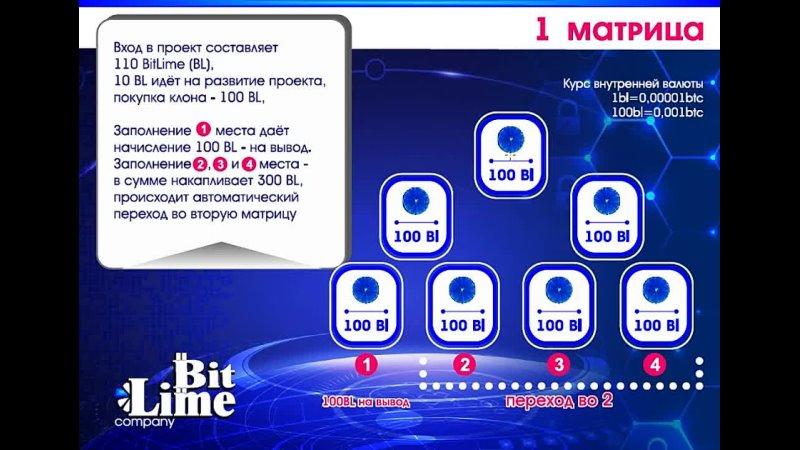 Стратегия быстрого возврата денег 1 матрица BitLime