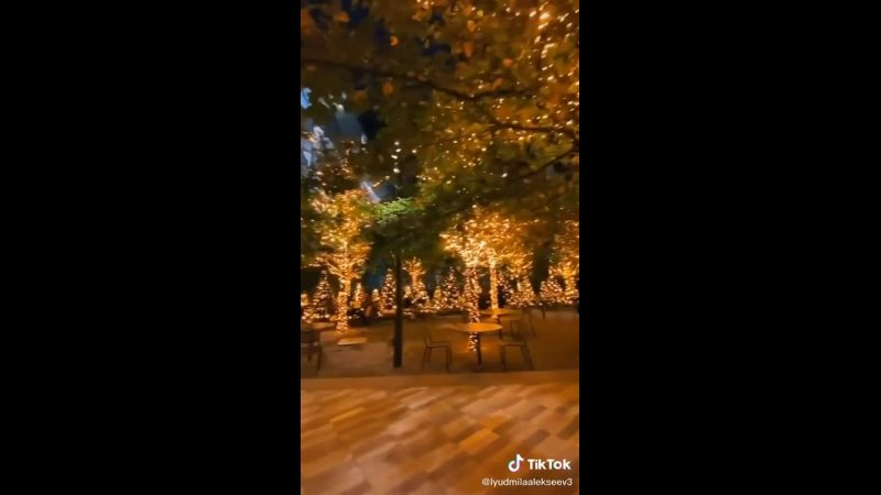 Видео от Надежды Лузиной