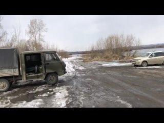 На берегу Енисея обнаружили свалку из трупов животных