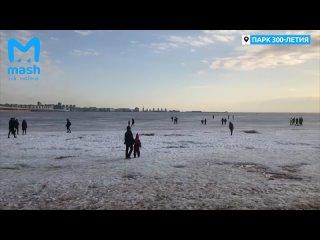 Опасные прогулки на заливе