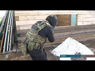 Стрельба, штурм и задержание: спецназ Росгвардии устроил показательную тренировку