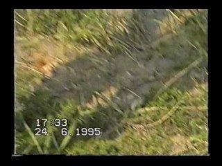 Клип - VTS_01_1 (6)-Фрагмент1(00_00_08-00_13_34)-DVD - Video(1)