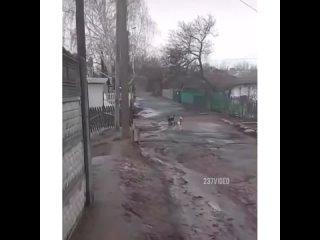 выпустим пар, повоюем без кровопролития)
