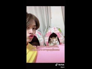 Как выучить кошек Минхо ?  Туториал / Лино / Суни Дори Дуни / Скз / Стреи / Stray Kids   Lee Know  