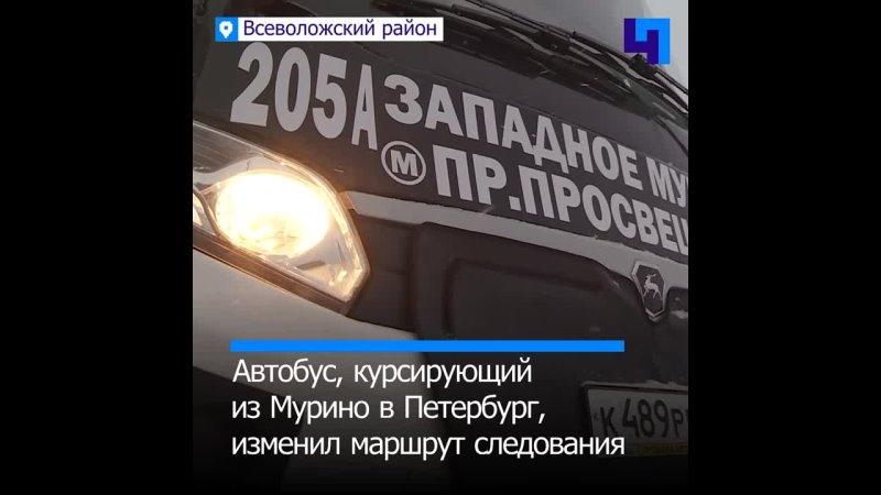 Полчаса до Петербурга в Мурино обновили маршрут до метро Проспект Просвещения