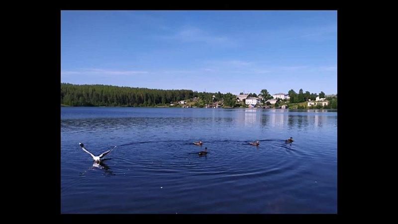Озеро Дядино От Сердца