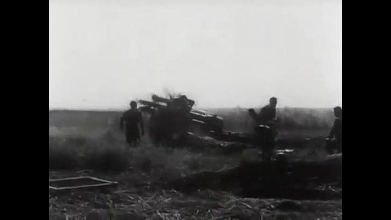 Немецкая хроника оккупации Николаева 1941