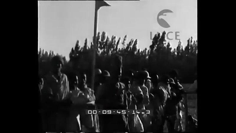 Manifestazioni per la celebrazione dellanniversario delle vittorie italiane in