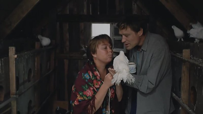 Эпизоды из фильма Любовь и Голуби