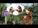 Маша и Медведь. Песенки для малышей. 2 серия Автобус