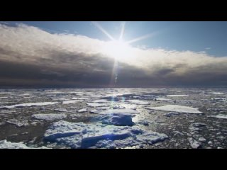 Nat Geo Wild_ Дикая природа России Wildlife in Russia   National Geographic 4K Ultra HD(720P_HD).mp4