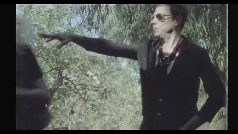 The Kills Heart Of A Dog Official Video 720 X 1280 mp4