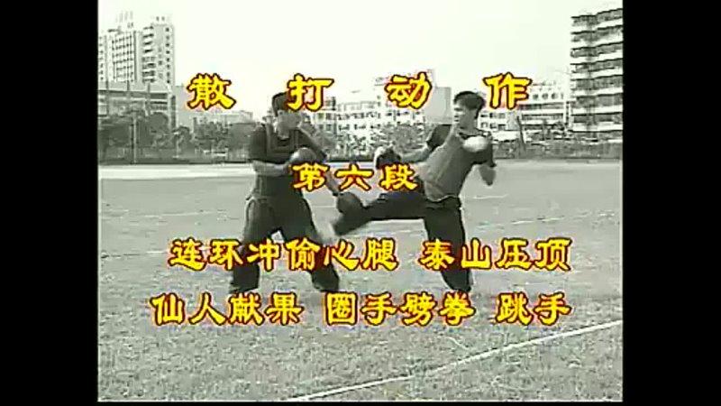Shaolin Sanda Sparring Fighting