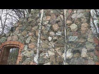 В деревне Ильжо Лужского района