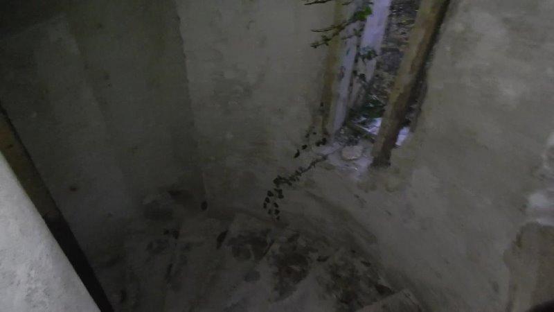 Винтовая лестница на Даче купца Силина