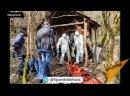 Абхазские спасатели помогли монахине-отшельнице