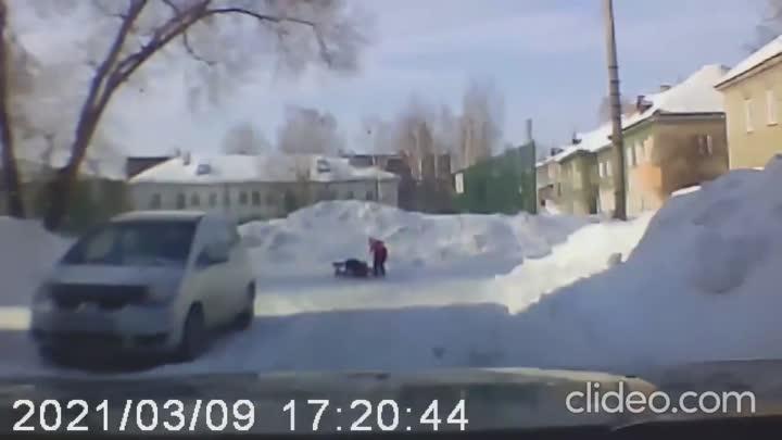 Собака напала на ребенка в Новосибирске