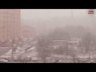 Ногинск.Внезапный мощный весенний снегопад. г.