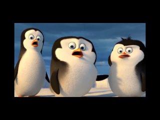 Вы моя родня, да? Пингвины Мадагаскара
