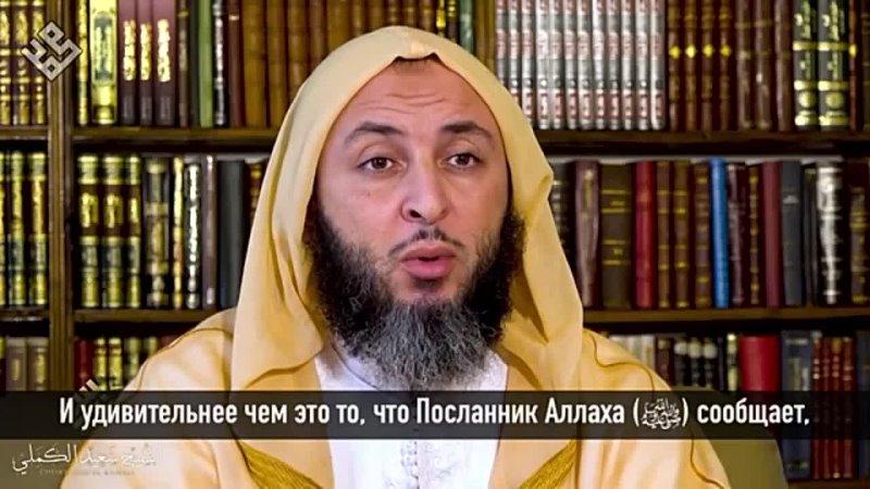 Шайх Саид аль Камали Хадис о милосердии к животным 360P mp4