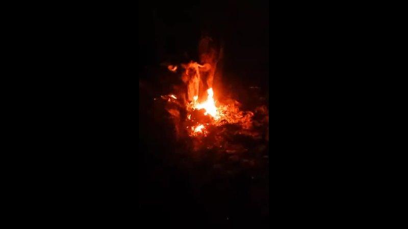 Союз Огня и Земли
