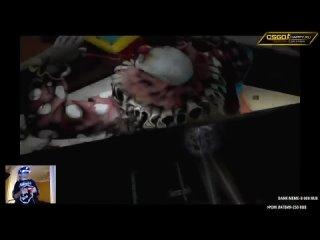 - Itpedia обсирается в хорроре на Playstation VR