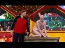 Уральские пельмени- Лысый кот 12 Ульев