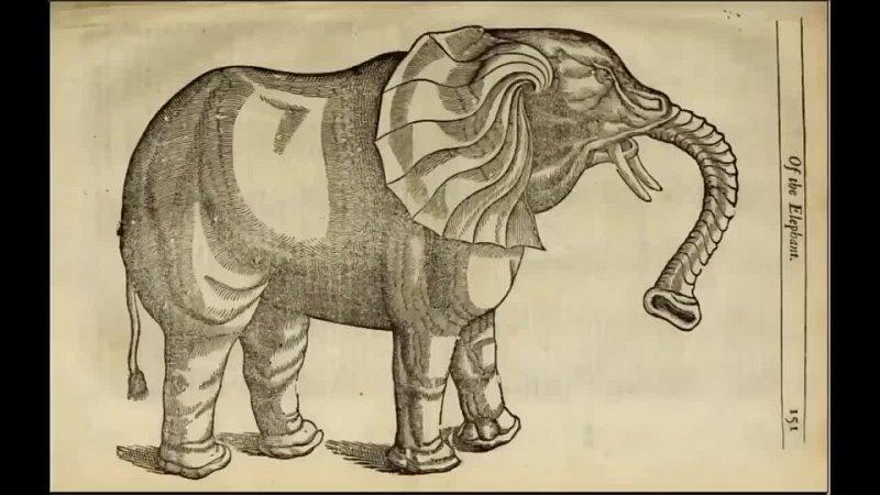 Вячеслав Котляров Социальный Авторитет 1658 год Странные книги нашего мира