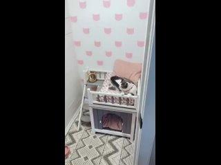 То чувство, когда у кота комната лучше, чем у тебя