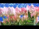 С-Днем-Рождения-женщине-_-Поздравление-с-Днем-Рождения-женщине-360p.mp4