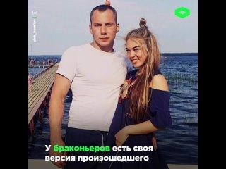 В Тверской области браконьеры задушили лосиху голыми руками I ROMB