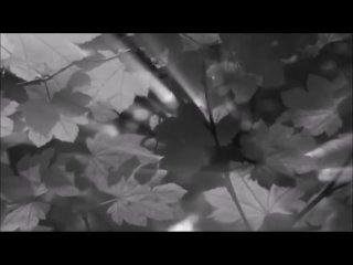 ATB feat. Jes - Hard To Cure (Fan Video)(480P).mp4