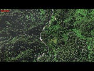 Рекламный ролик Greenpeace Chile (Русская озвучка)