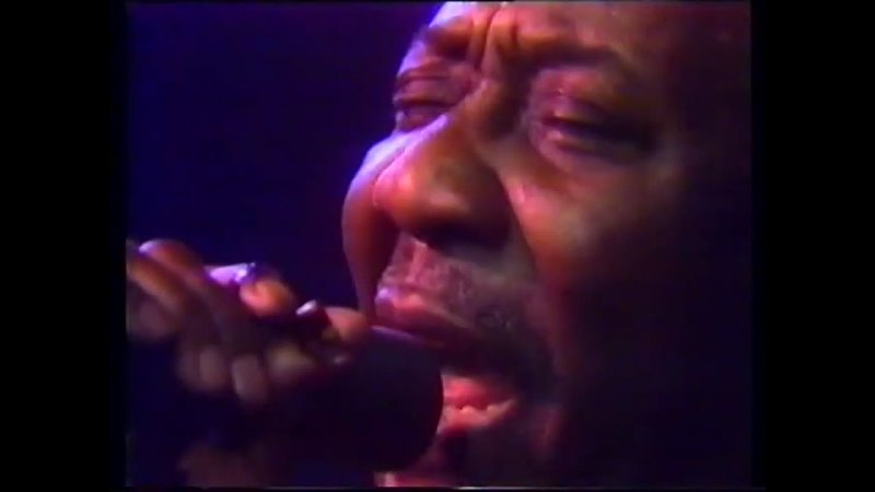 Muddy Waters With Pinetop Perkins In Concert 1980