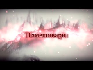 Тамешивари
