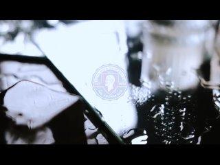 Video by Alex Chek