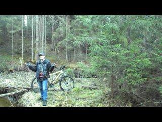 Покатушка в лес на природу . ПяТнИцА =)