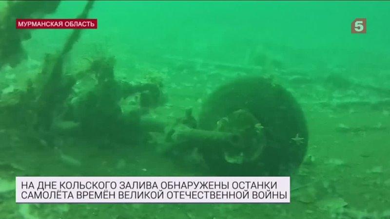 Поразительные находки обнаружены надне Кольского залива