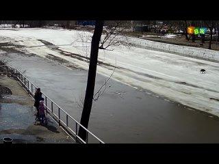 Кадры спасения собаки на реке в Аше