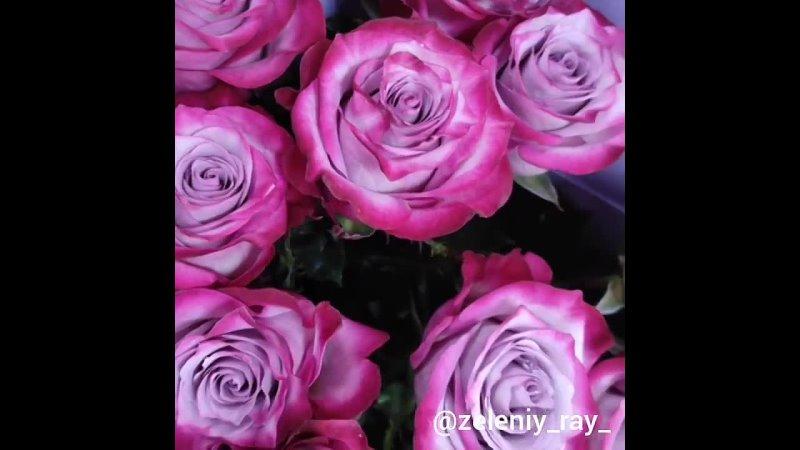🌹 Цветы в розницу и оптомРозы тюльпаны хризантемы пионы эустома альстромерия кустовая роза орхидеи гербера лилии горт